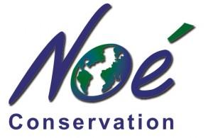 logo_noe